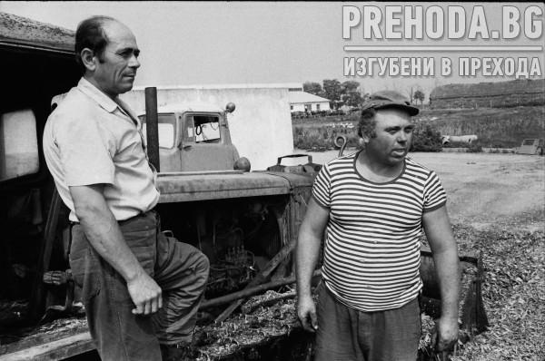 ПЛЕВЕН-СЕЛСКО СТОПАНСТВО,ТЮТЮНЕВ КОМБИНАТ,ДЕТСКИ ГРАДИНИ