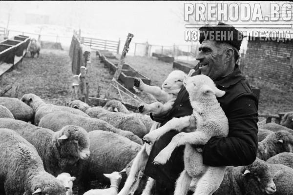 с.БЪРДАРСКИ ГЕРАН-ЖИВОТНОВЪДИ