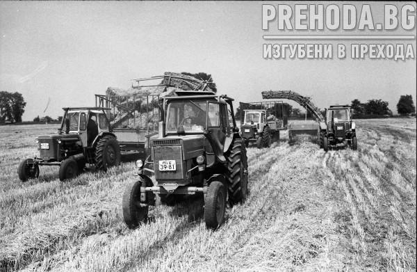 АПК-ПАЗАРДЖИК