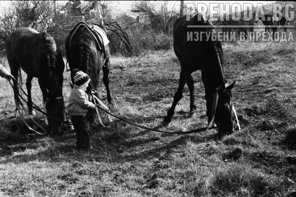 ХИПОДРУМА КРАЙ БАНКЯ-ТОДОРОВ ДЕН