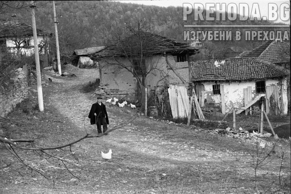 с.БУСИНЦИ,ТРЪНСКО И ПАМЕТНИКА-БАЛОВА ШУМА